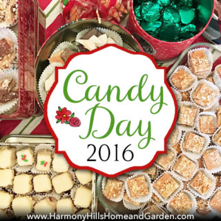 Candy Day 2016