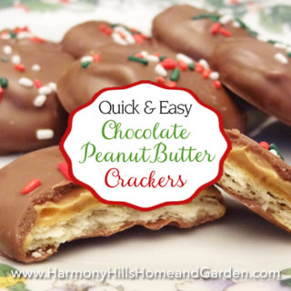 Chocolate Peanut Butter Crackers