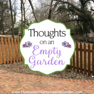 Thoughts On An Empty Garden