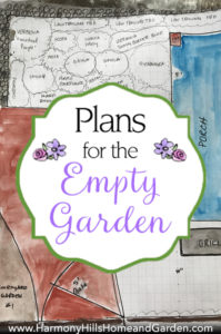 Plans for the Empty Garden - initial thoughts on creating a new courtyard garden space