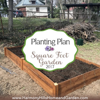 Square Foot Garden Planting Plan for 2017