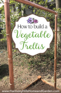 How to Build a Vegetable Trellis that's beautiful, functional, inexpensive and easy! www.HarmonyHillsHomeandGarden.com