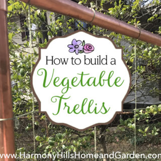 How To Build a Vegetable Trellis