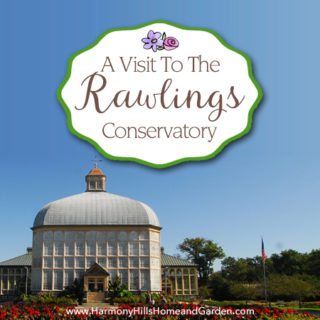 A Visit to the Rawlings Conservatory