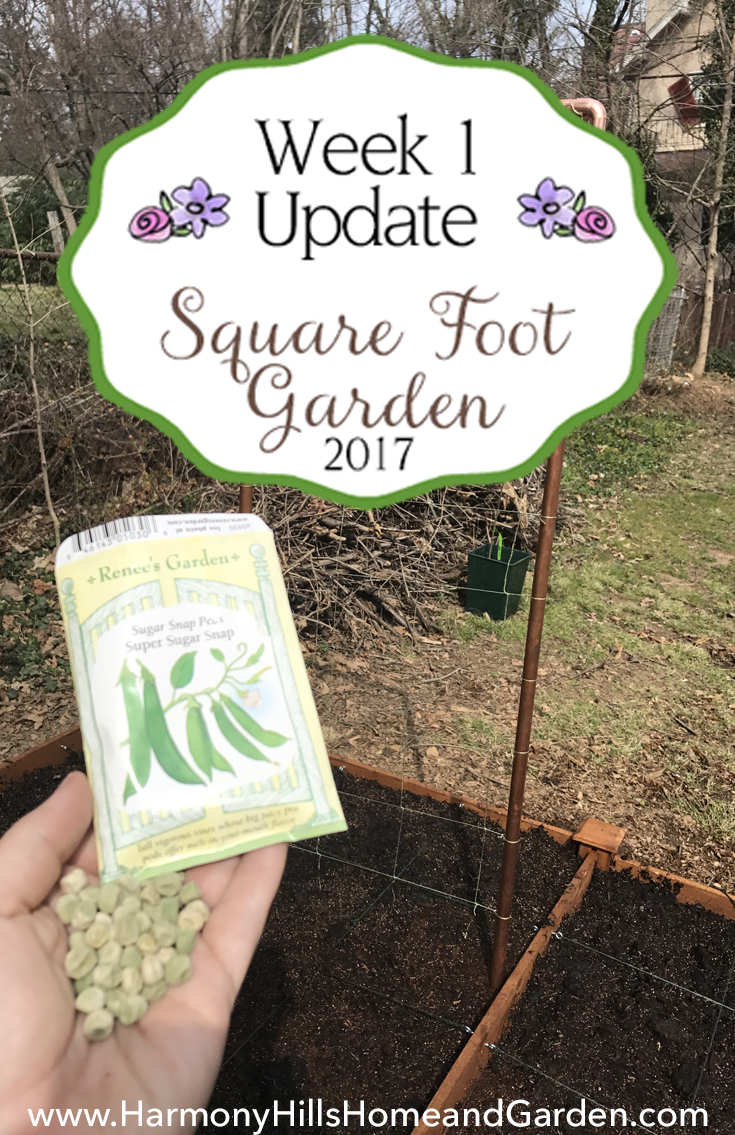 My square foot garden Week 1 Update - www.HarmonyHillsHomeandGarden.com