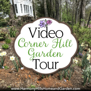 Video Tour:  Corner Hill Garden Spring 2017